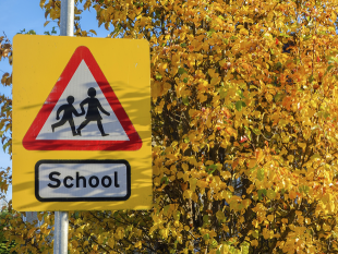 a school road sign in the forefront, trees in the backgroudn, the leaves with a yellow tinge suggesting early onset signs of autumn